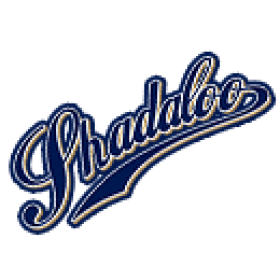 Shadaloo 91 series